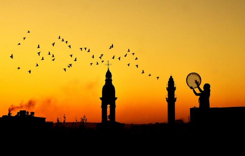 Ramazan Darı – Portfolyo